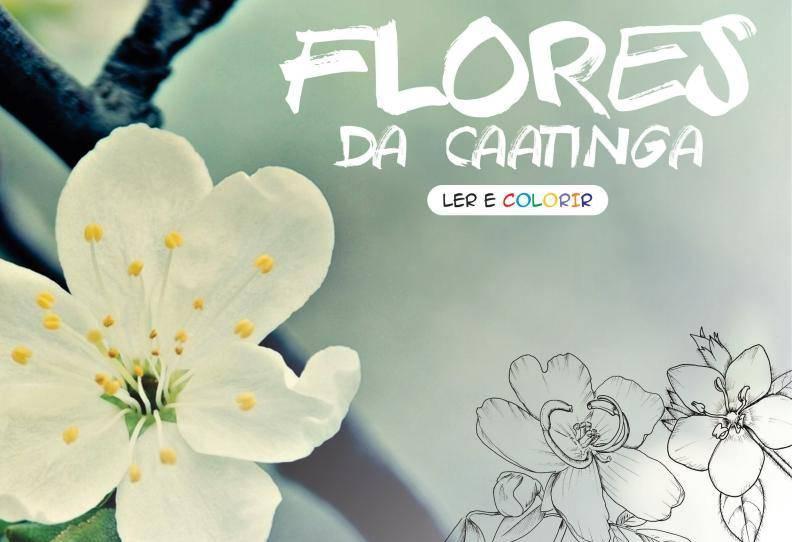 flores_da_caatinga_2