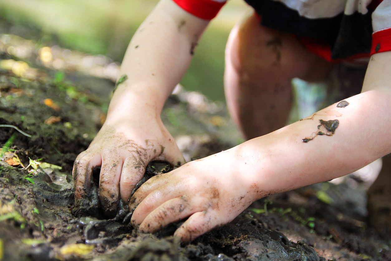 Little Child's Hands Digging in the Mud