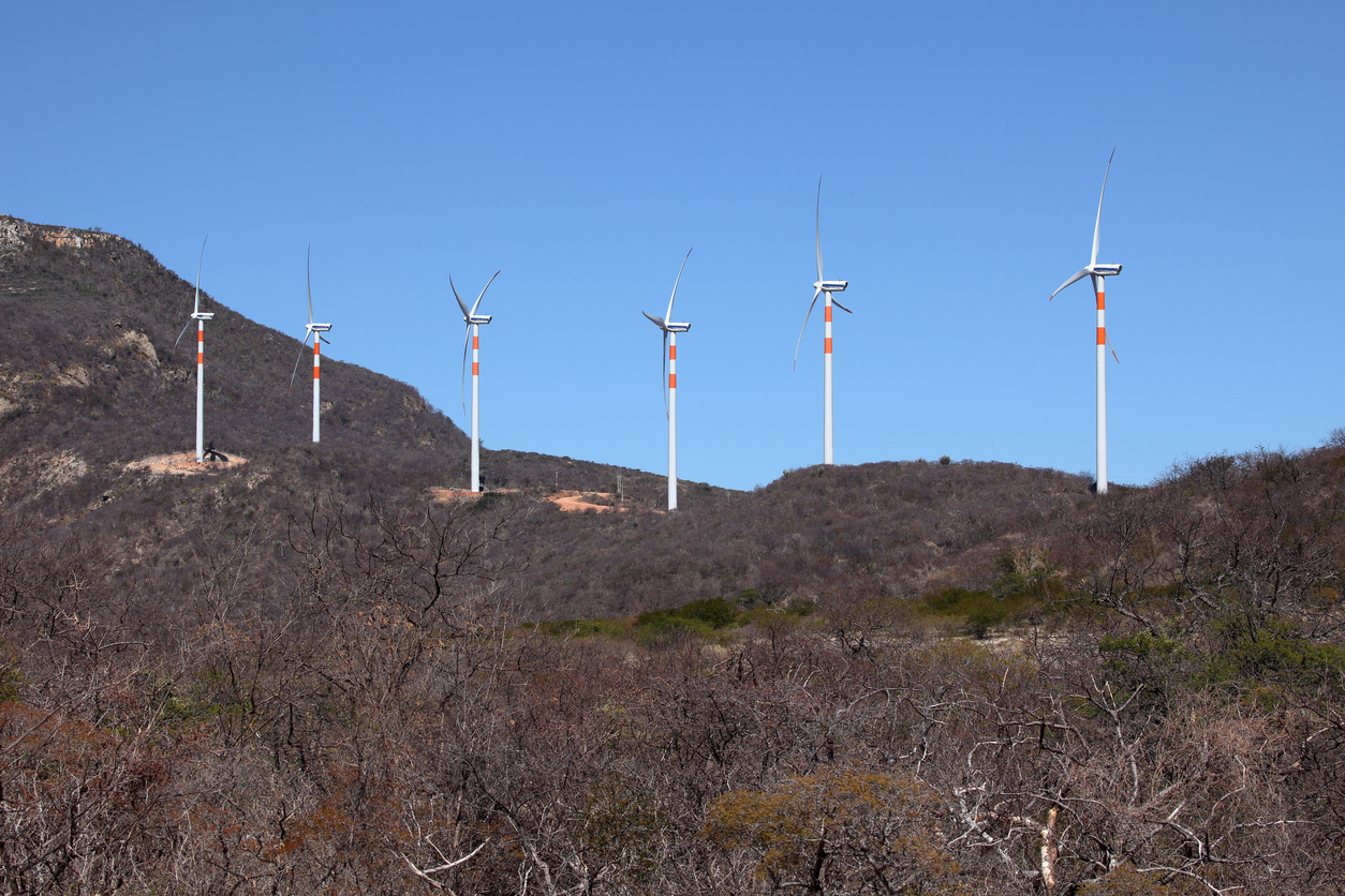Wind energy plants in the Caatinga of Brazil