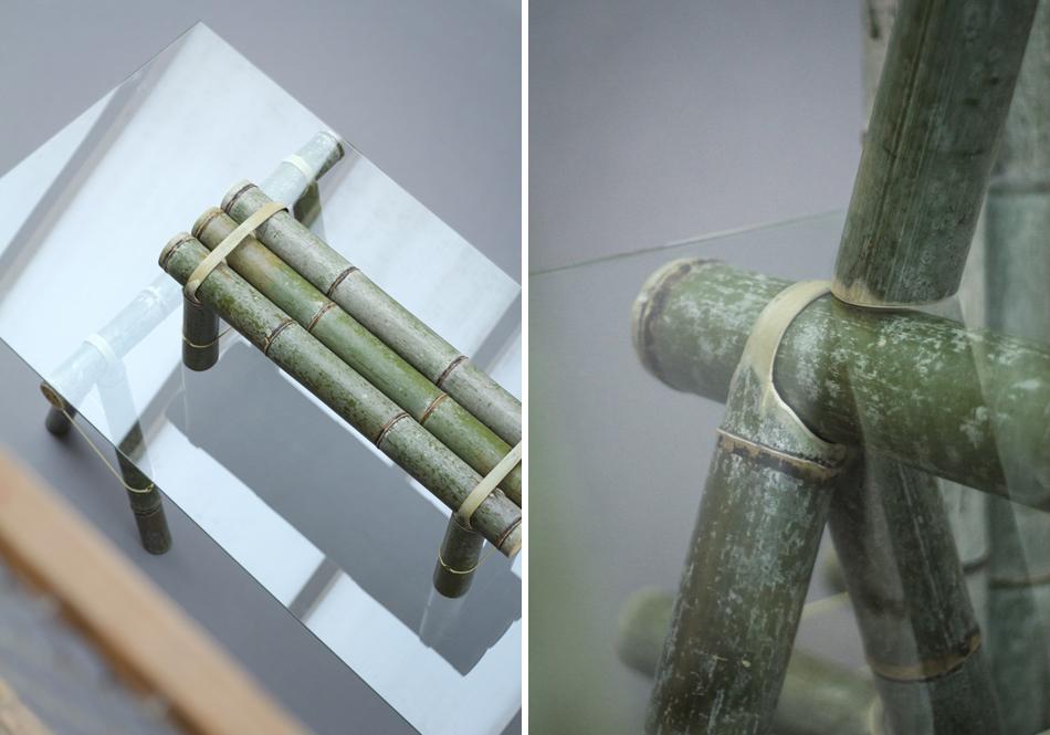 bambu-ciclovivo