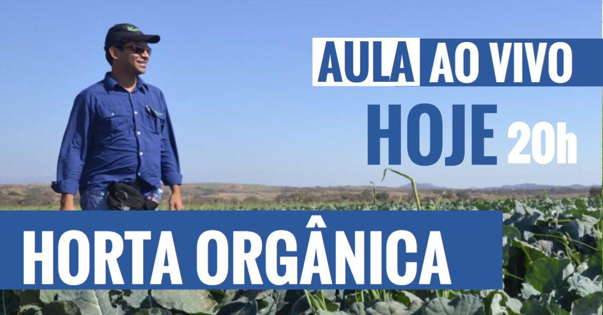 aula-ao-vivo-horta-orgânica-imgrower