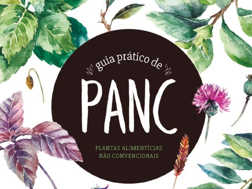 panc-alimentos-ciclovivo